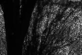 적막강산 시리즈-무제02