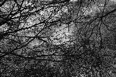 적막강산 시리즈-무제03